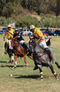 Horses can gallop at break-neck speed duing a polo match. Photo: Tom Hofer